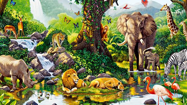 İnsanın gezegene son 40 yıllık faturası: Biyolojik çeşitlilik yarı yarıya azaldı