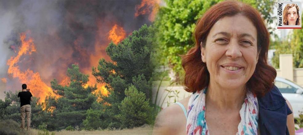 Bu ormanlar neden yanıyor?