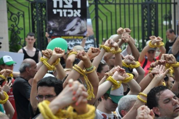 Binlerce Yahudi ve Arap aktivist hayvan özgürlüğü için birleşti