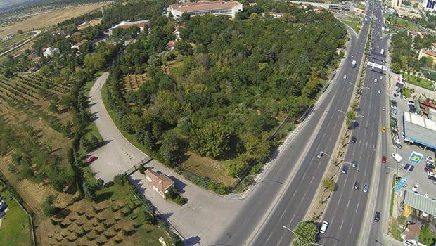 Orman Bakanlığı'na bina yapılabilsin diye yüzlerce ağaç kesilecek!