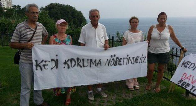 Antalya'da kedi katliamına karşı nöbet tutan hayvanseverlere taşlı saldırı