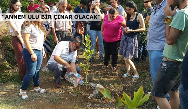 Suruç'ta yaşamını yitirenler için Kamp Armen'e çınar ağacı