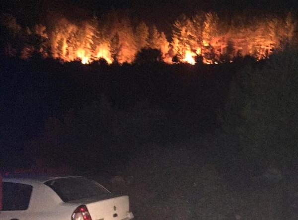 Dört taraf 'yangın yeri': Manavgat'ta 20 hektar kül oldu, İbradı'da müdahale sürüyor