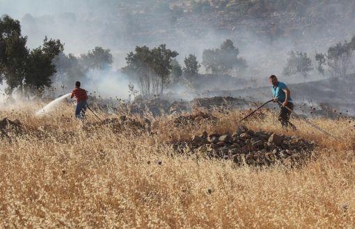 """Yaşam savunucuları yangınları inceliyor: """"Botan, Diyarbakır, Dersim'in Ormanları Göz Göre Göre Yanıyor"""""""