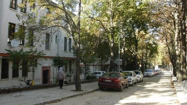 Danıştay: Saraçoğlu'nda risk yok
