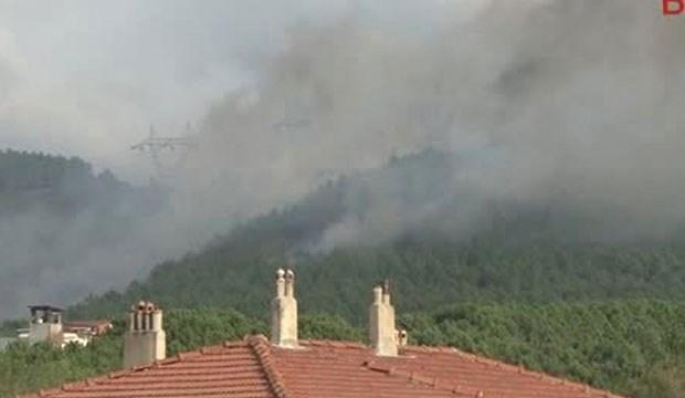 Sultanbeyli'de 5 ayrı yerde orman yangını