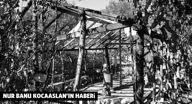 Fatsa'da siyanürlü madene karşı 10 aydır direnen köylülerin çadırı yakıldı