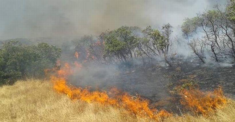 Peri yanıyor: 'Hem baraj, hem güvenlik'