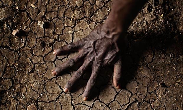 Satish Kumar'ın kaleminden toprak, ruh ve toplum arasındaki bağlantı