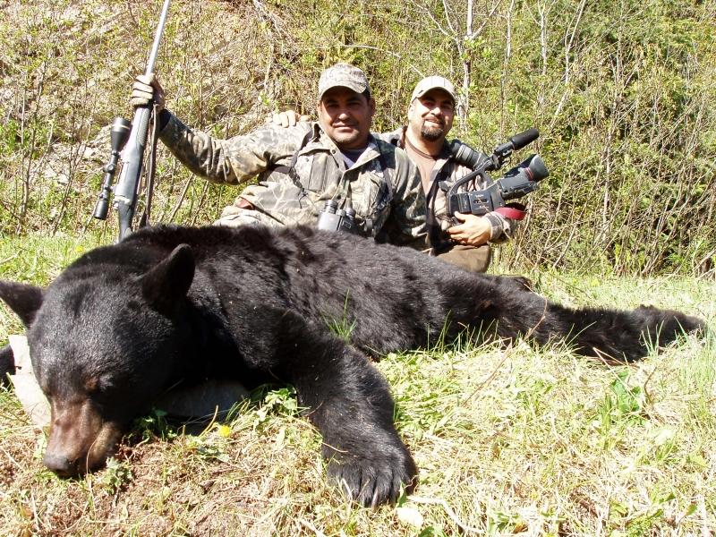 Floridalı avcılar iki günde 300 siyah ayıyı katletti