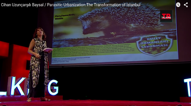 Plundering lungs of Istanbul and Parasitic Urbanization