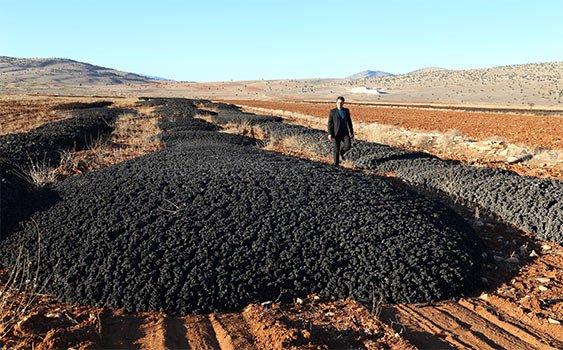 Kanalizasyon atığı tarlalara dökülüyor