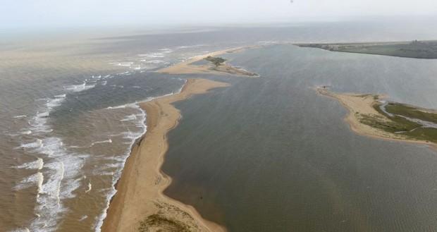 'Zehirli nehir' Atlas Okyanusu'na ulaştı; deniz canlıları tehlikede