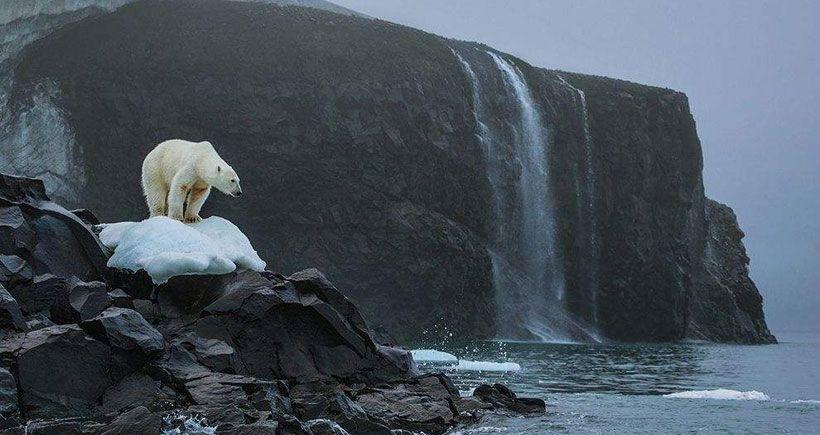 İklim Konferansı Raporu: Fiyasko mu tarihi adım mı?