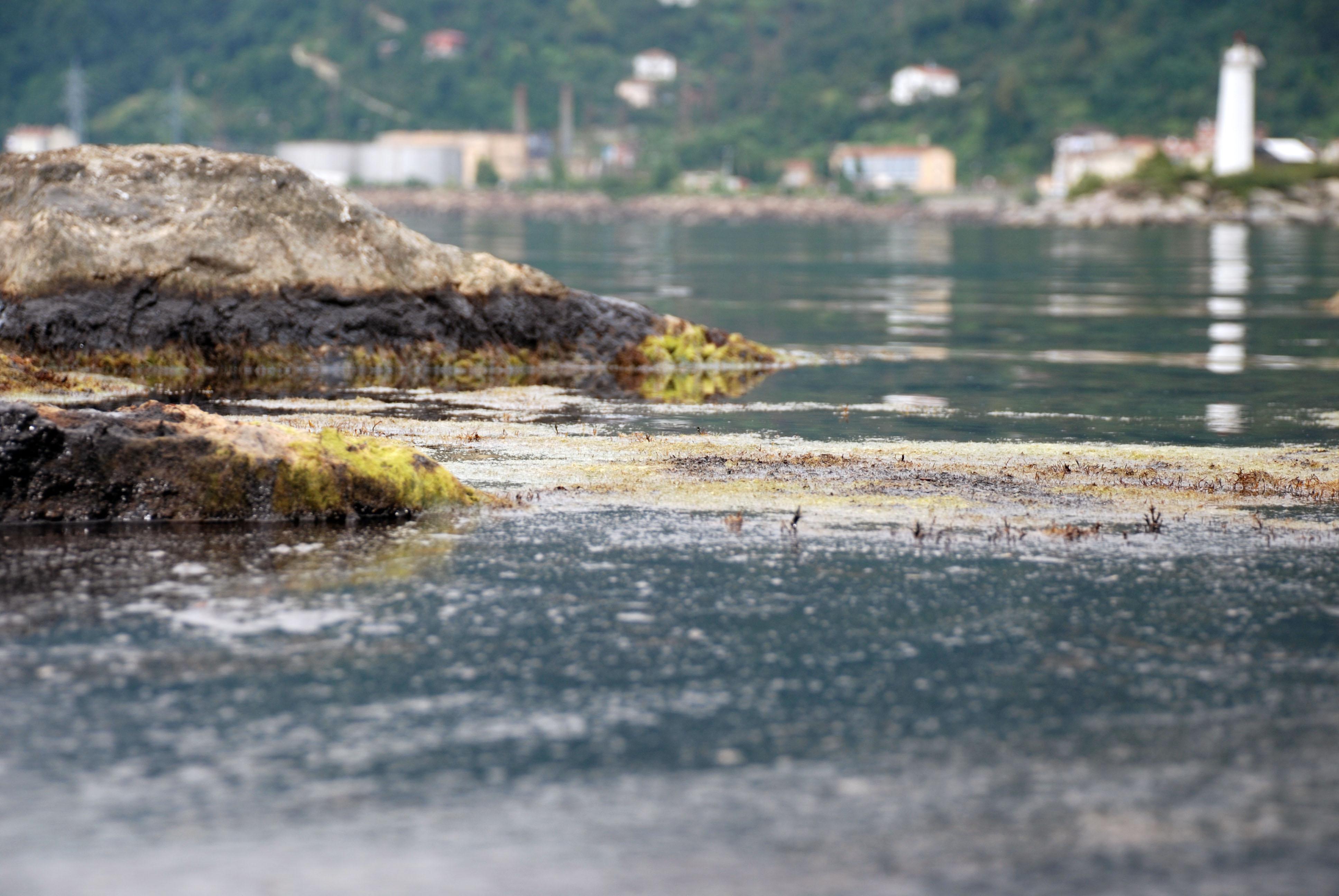 Kadıköy'ün, İstanbul'un ve Marmara Denizi'nin  en önemli ihtiyacı biyolojik arıtma tesisidir