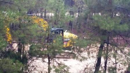 Gaziantep Büyükşehir'den ağaç katliamı