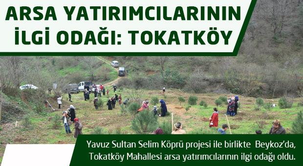 Arsa yatırımcılarının yeni gözdesi Beykoz Tokatköy