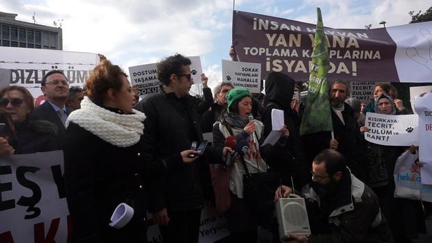 Kısırkaya hayvan toplama kampı protesto edildi