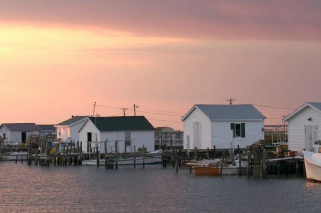 ABD'nin ilk iklim göçmenleri: Chesapeake Körfezi sakinleri