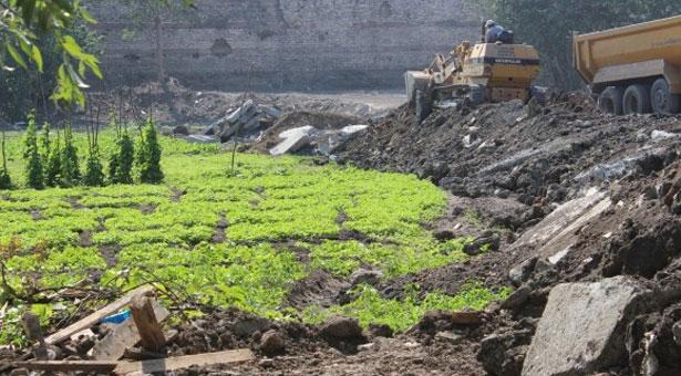 Dünya kentsel tarımla coşarken biz bostanlarımızı feda mı edeceğiz?