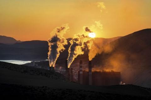 Kirli hava genleri nasıl etkiliyor?