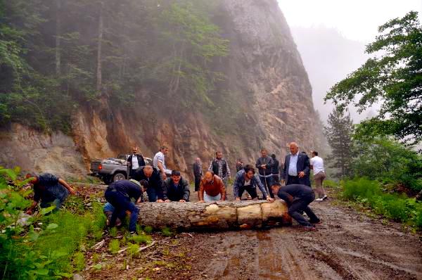 Orman Mühendisleri Odası: Artvin halkının yanındayız
