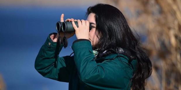 Eymir ve Mogan Gölleri'nde kış ortası su kuşu sayımı keyfi