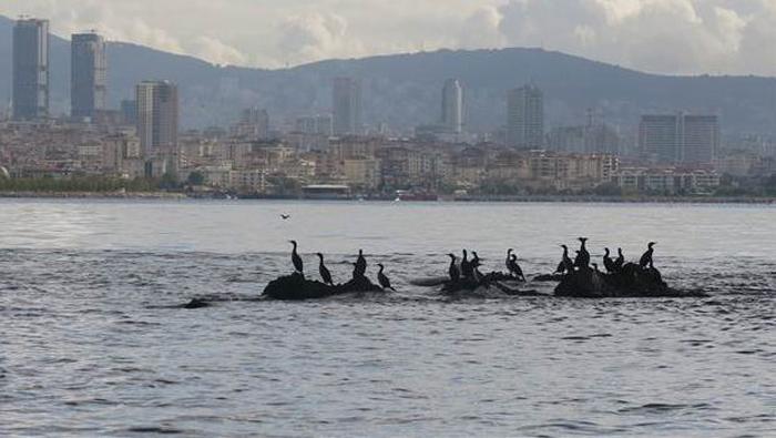 İstanbul'un Depremle Suya Gömülen Adası UNESCO Yolunda