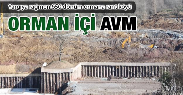 """Danıştay'da davası süren """"Köy"""" projesi için Zekeriyaköy ormanlarında talan sürüyor"""