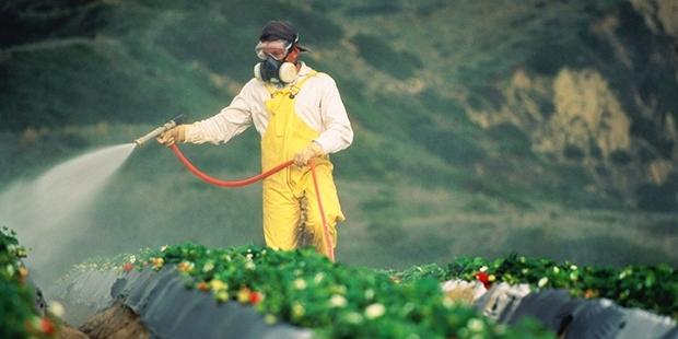 Bakanlık gizledi, Cumhuriyet açıklıyor (2): Hangi sebzede arsenik, hangi suda tarım ilacı var?