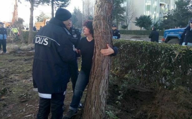 Yahya Kaptan'da ağaç kıyımı başladı, halk ağaçlara sahip çıkıyor