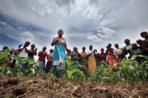 300 Yerli Halkı Örgütü Küresel Koalisyon Kurdu