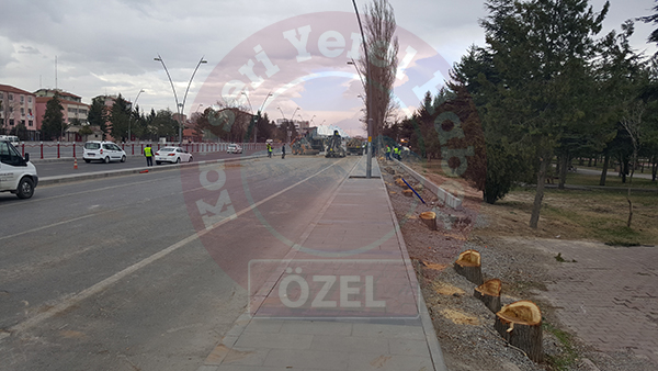 Kayseri Büyükşehir Belediye Başkanı Mustafa Çelik bu kez de ağaç katliamı yaptı