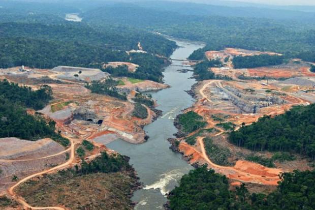 'Hayır' Demeyi Öğrenmezsek Dünya Ormanları Yok Olacak