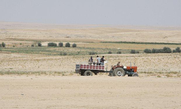 Suriye'deki kuraklık son 900 yılın en şiddetlisi olabilir