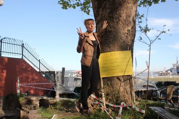 Asırlık çınarlar için tek kişilik protesto!