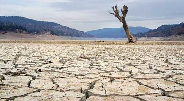Orman Bakanlığı, kuraklık lobisine karşı