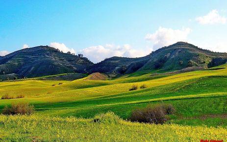 Neden çimenler değil de kırlar daha önemlidir?