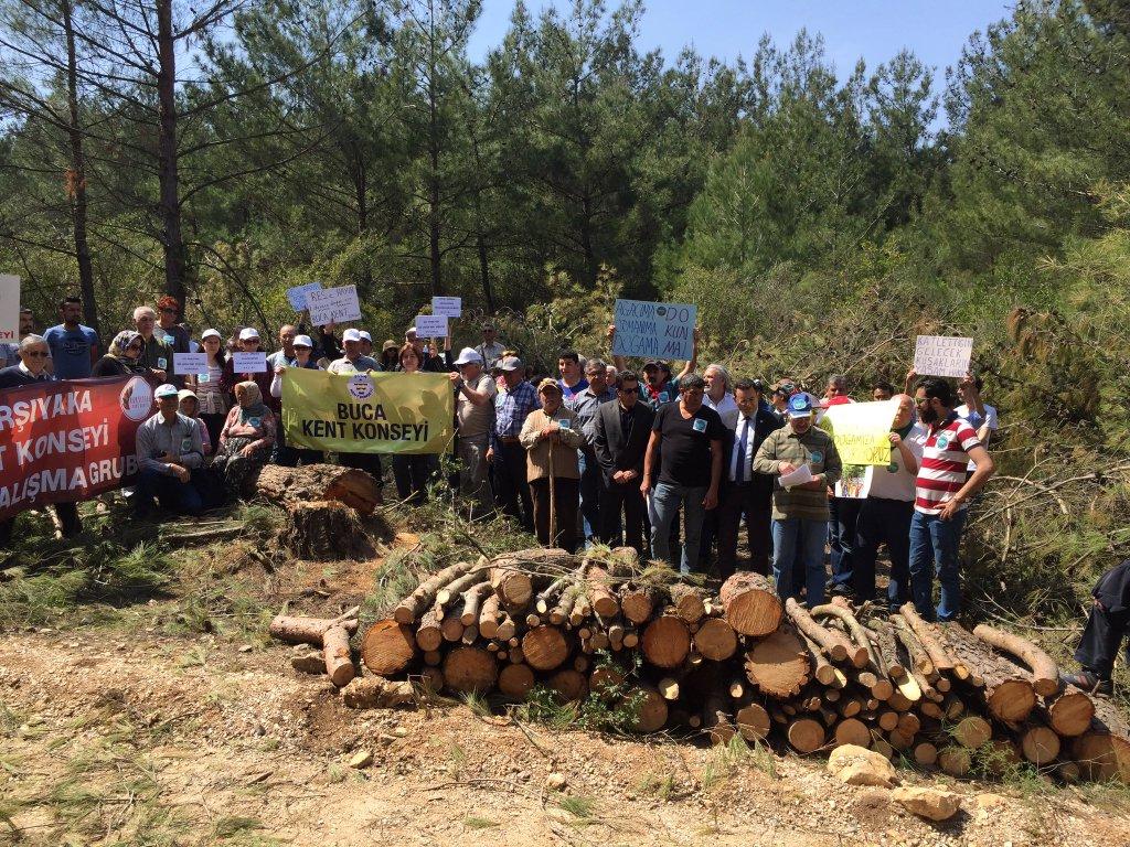 Urla Ovacık'ta direniş ağaç kesimini engelledi