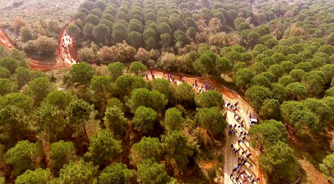 92 Ormanı Seni Bekliyor!