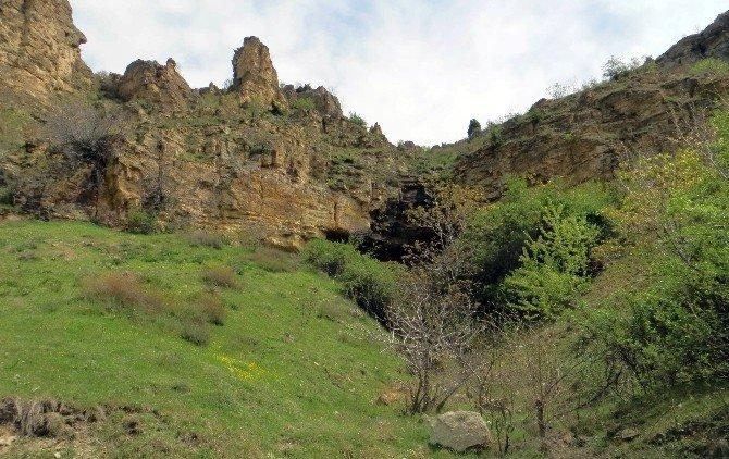Beypazarı Kelebekler Vadisi, Türkiye'nin 205'inci Milli Tabiat Parkı Oldu