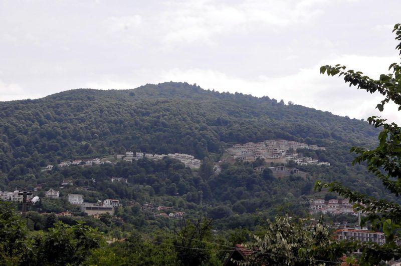 """Orman Bakanlığı Sapanca'da ormanı göremedi! İnşaatlar """"küçük ağaçlık alanlar""""a yapılıyormuş."""