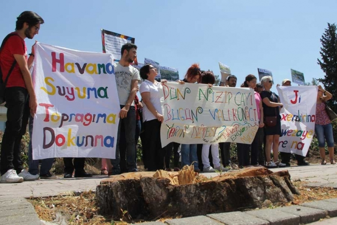 Antep Ekoloji Derneği: Belediye, doğa tahribatı yaratıyor