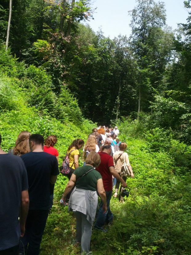 3. Köprü yolunun böldüğü, şimdi de dekovil hattı tehdidindeki Belgrad Ormanı'nda keşif yürüyüşü yaptık