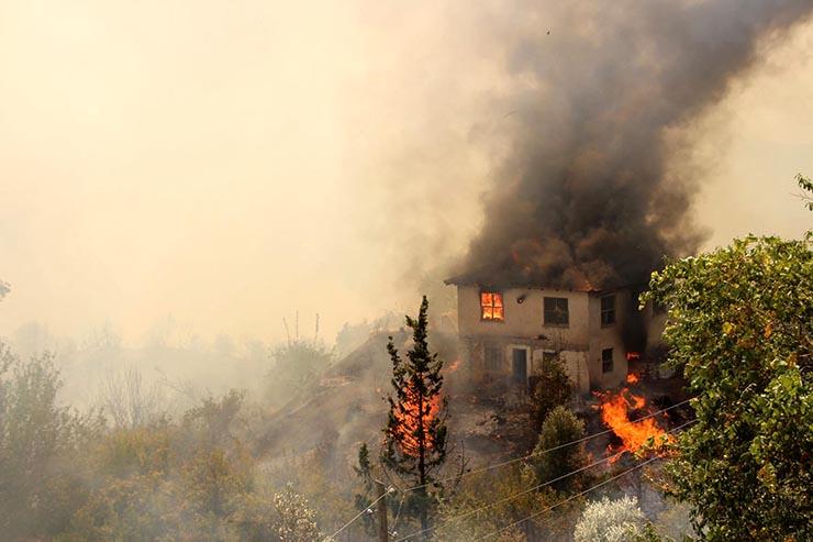 Türkiye Ormancılar Derneği: Antalya'da söylenenin üç katı alan yandı