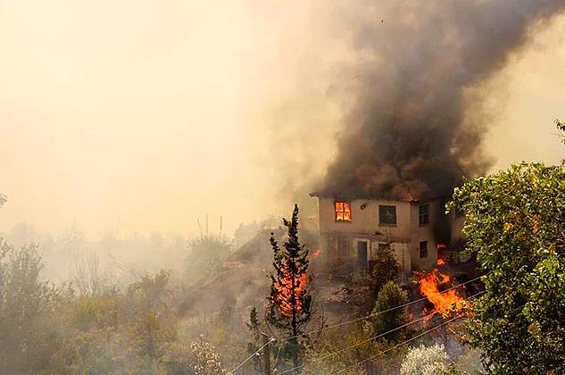 Yangınların önünü yandaş hırsı açtı