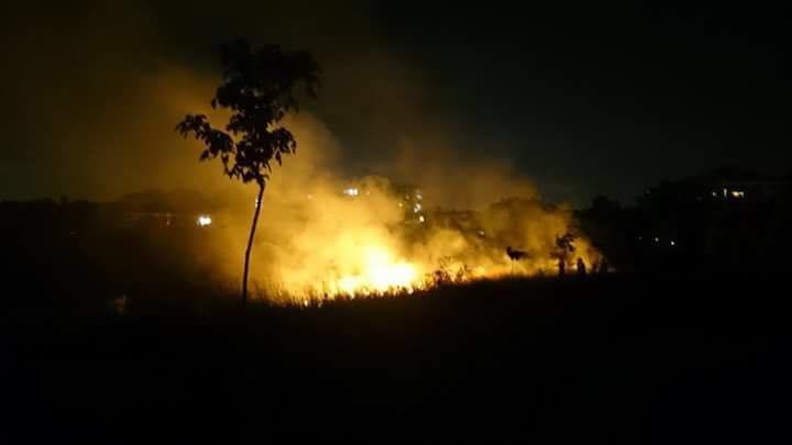 Validebağ Korusu'nda çıkan yangını mahalleli söndürdü, bir kez daha #koruyukoru du.