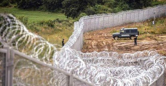 """Bulgaristan Kuzey Ormanları'nı """"tel duvar""""la bölerse Istrancaların yaban hayatı felce uğrar!"""