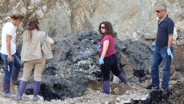 Sakarya'da taş ocağına gömülen atıklar ölümcül çıktı