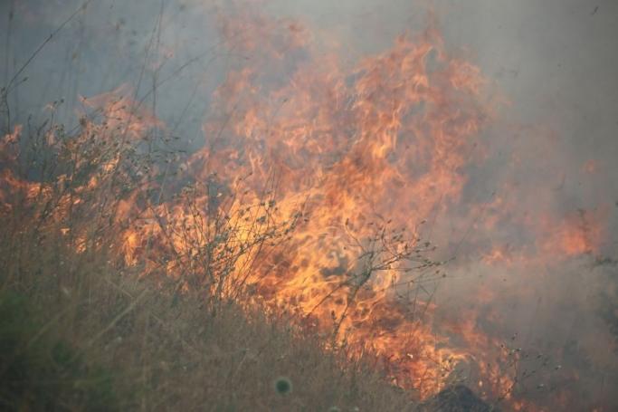 Düzgün Baba'daki yangın yayıldı